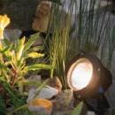 Lunaqua 10 halogeen lamp los