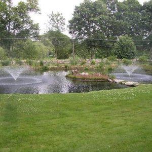 Drijvende fontein 0,37 kw 230 volt Aquamaster