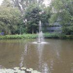 794-fleur-de-lis-losse-fonteinkop-15